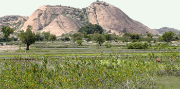 The Kottai-malai, view from the north, Narttamalai